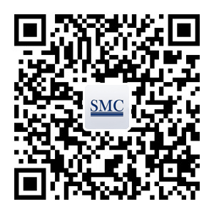 South Africa – Shanghai Metal Corporation