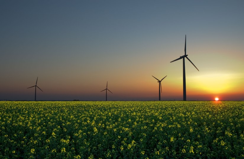 Germany's Key in Increasing the Uses of Green Energy