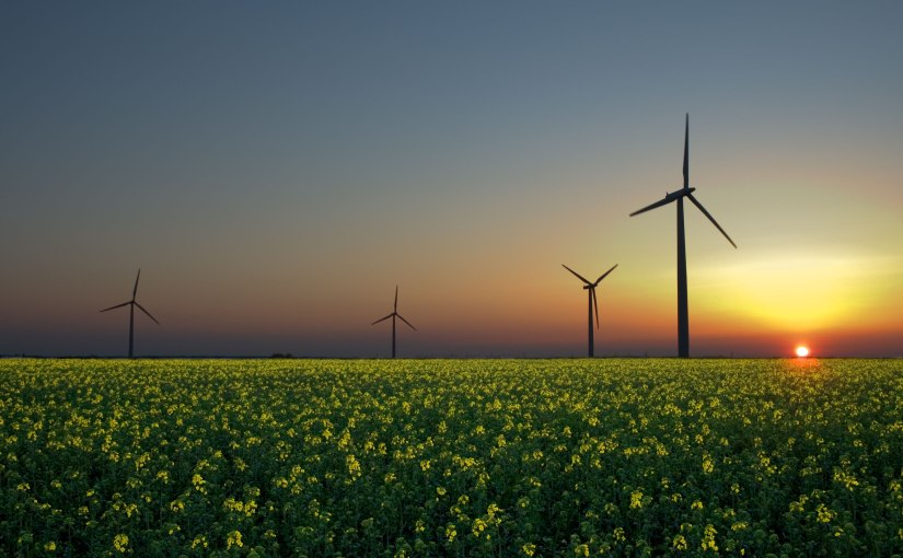 Germany's Key in Increasing the Uses of GreenEnergy